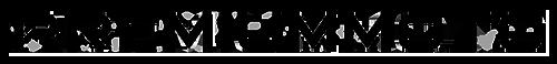 Blog motoryzacyjny PremiumMoto.pl logo