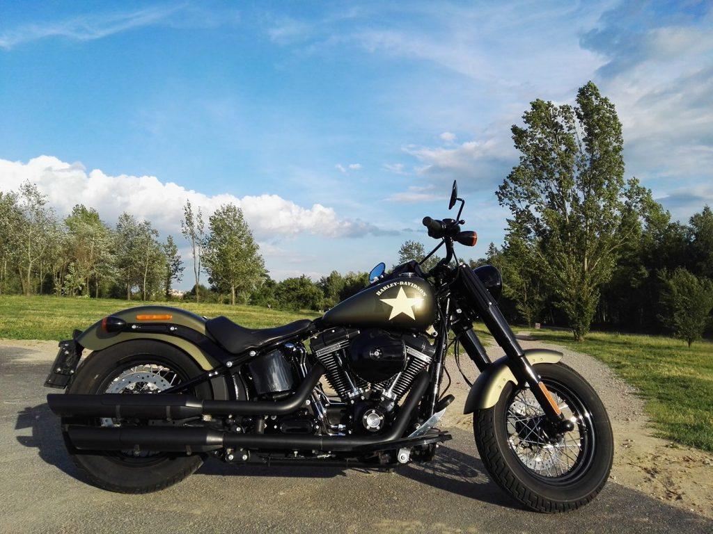 Harley Davidson slimtail S